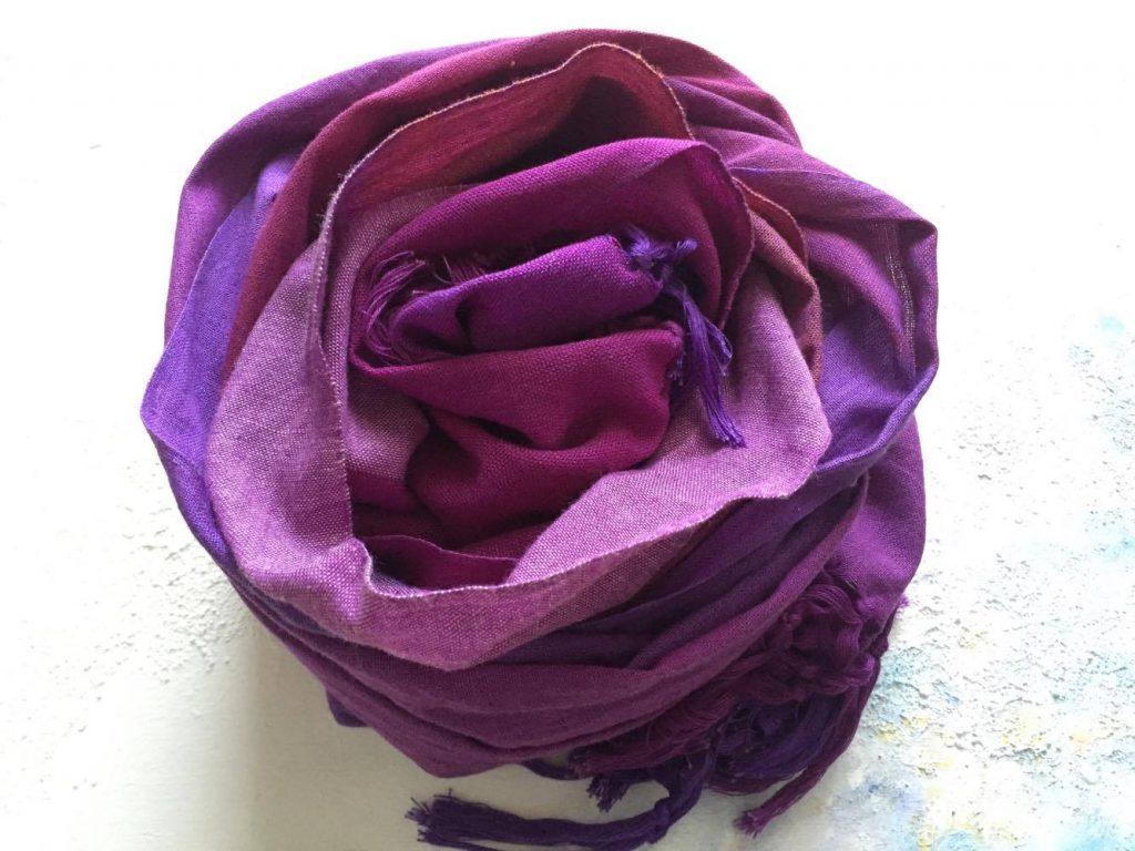 紫のレボソの写真