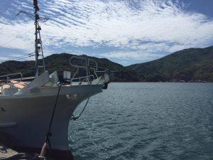 海と漁船の堤防の写真