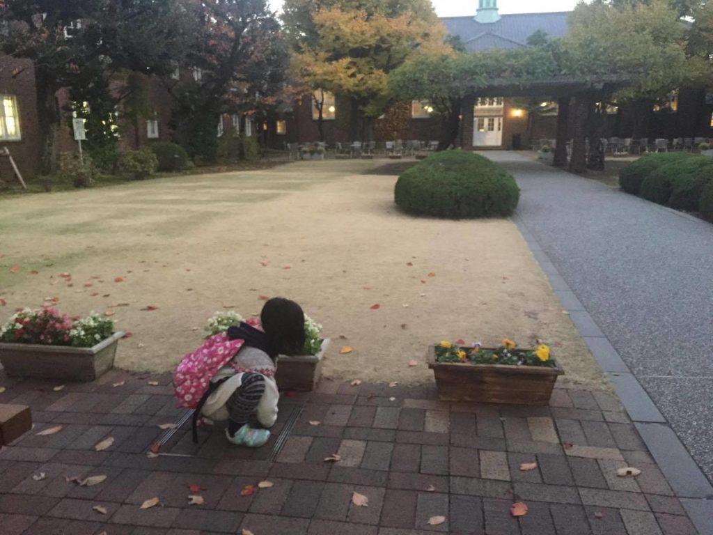 大学構内で落ち葉を拾って遊ぶ子ども